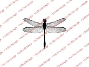 Visible Image Dragonfly 2014 stamp