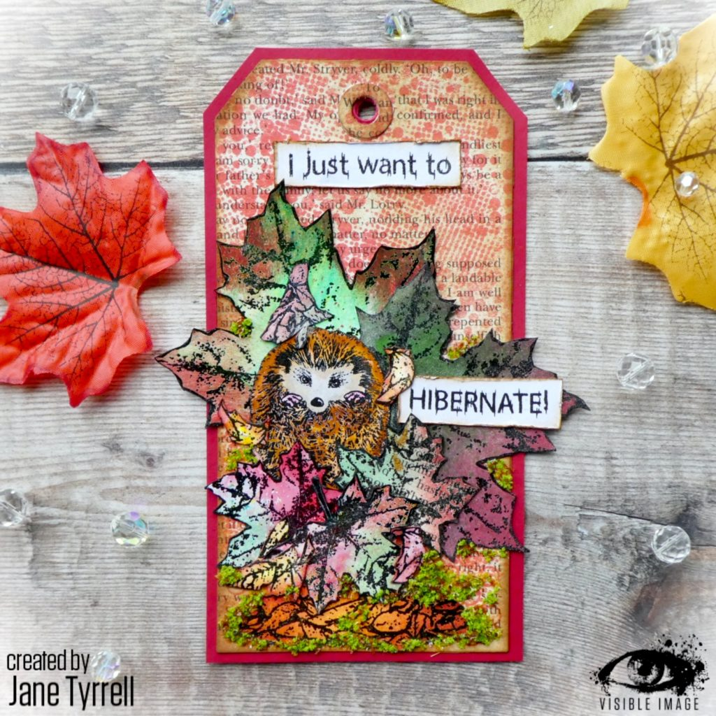 hedgehog stamps | autumn tags | clear | rubber | i want to hibernate